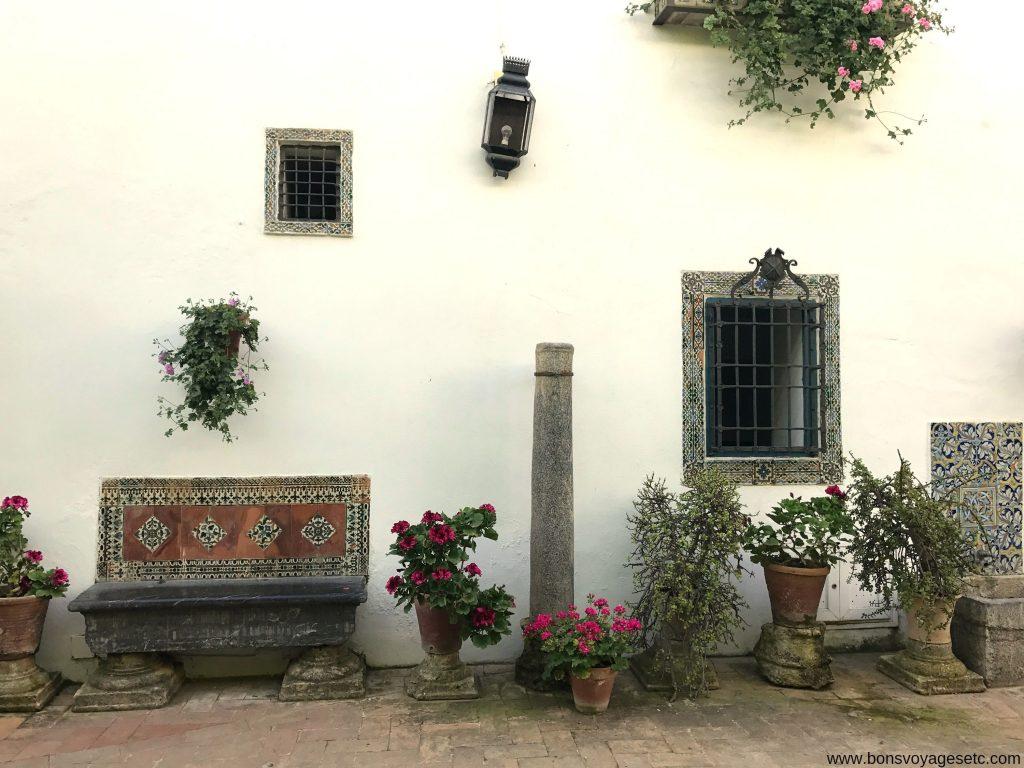 Palacio-Viana