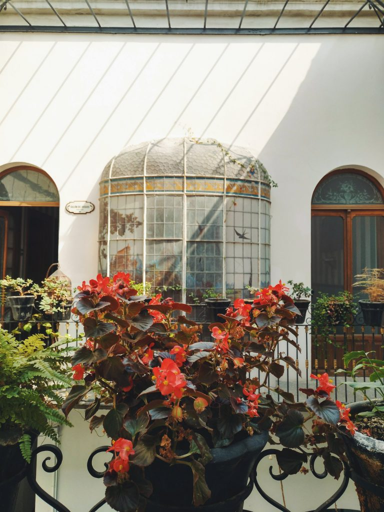 Leonora-Hostal-Puebla