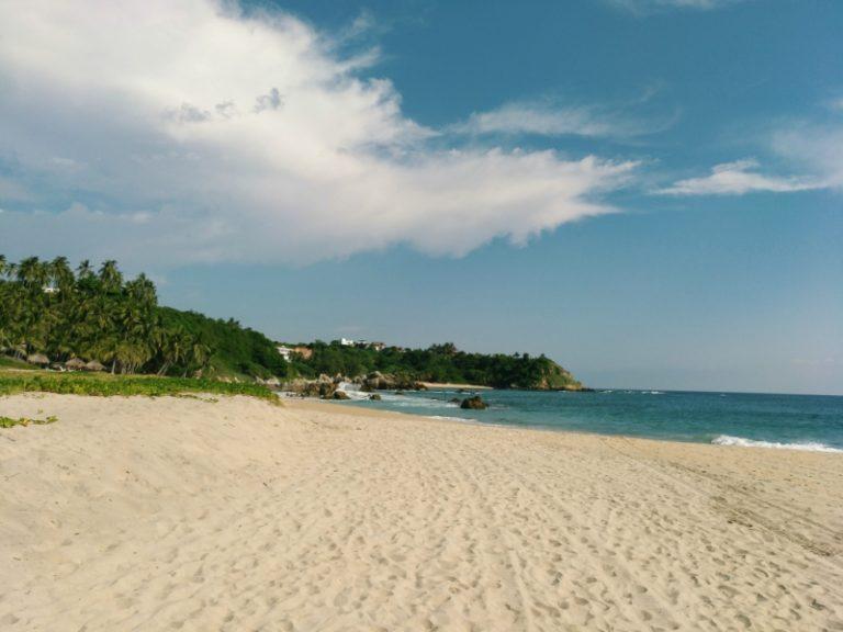 Visiter Puerto Escondido : libérer des tortues au Mexique