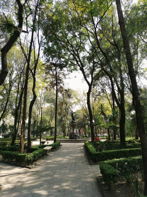 plaza-ciudadela